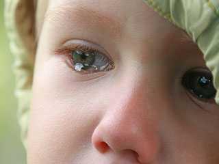 Брянского истязателя ребенка отправили за решетку