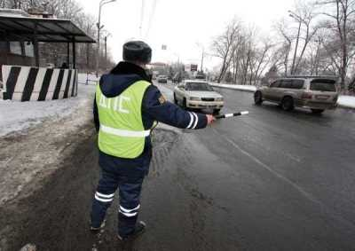 Брянские инспекторы ДПС поймали нетипичных для них нарушителей