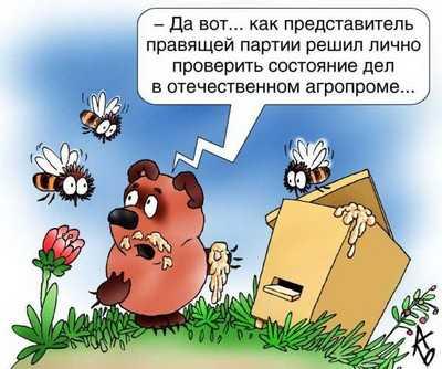 Брянская КСП выявила нарушения почти на 2 миллиарда рублей
