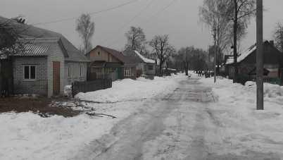 Брянская пенсионерка пригрозила написать Путину, если паводок затопит её дом