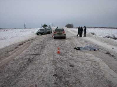 В Брянской области селянка погибла под колёсами Тойоты