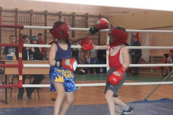 В Локте прошло областное первенство юных брянских боксеров