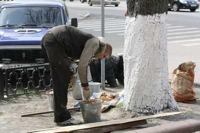 Грызть лед улиц Брянска приказали круглосуточно