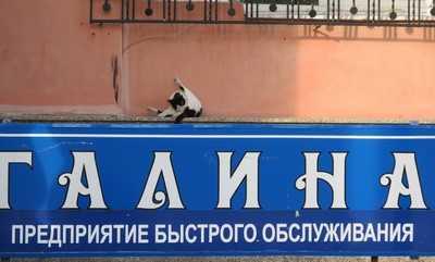 Брянские власти будут финансировать байки «Михалыча»