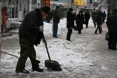 После кнута брянские чиновники вышли с лопатами и ломами