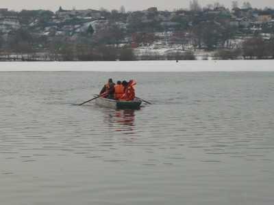 Брянские спасатели выручили замерзавшего лебедя