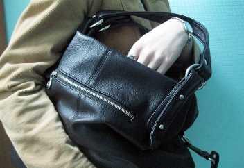 Юная жительница Брянска  украла сумку с валютой  из незапертой квартиры