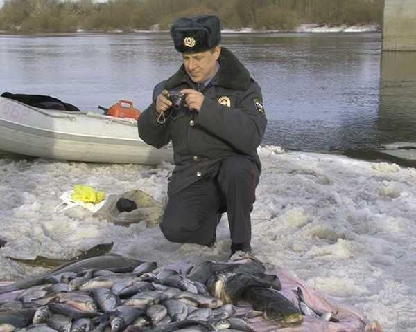 Брянские браконьеры попались на ловле краснокнижных рыб