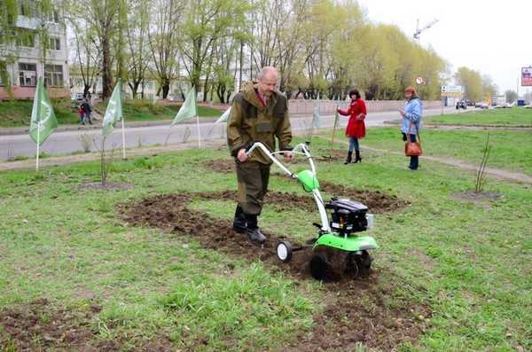 После встречи с «Грин Пис – Брянск» школьники позеленели