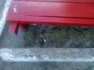Сон задремавшего на улице пьяного жителя Брянска  охраняли учебные гранаты
