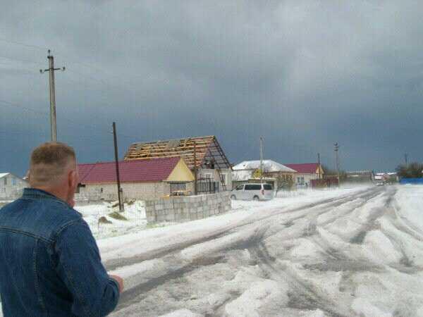 Град побил в Погарском районе 100 гектаров посевов