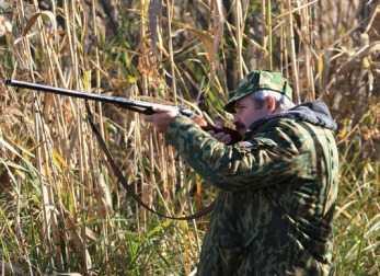 Перед судом предстанет брянский охотник,подстреливший на охоте напарника