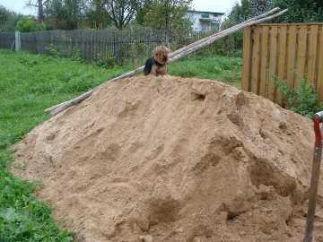 В Брянской области  семилетний ребёнок погиб под завалом песка