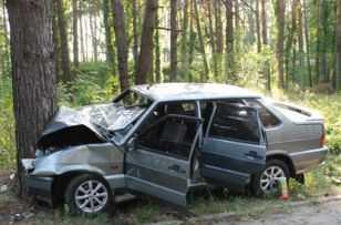 Под Брянском  легковушка врезалась в дерево – водитель в коме