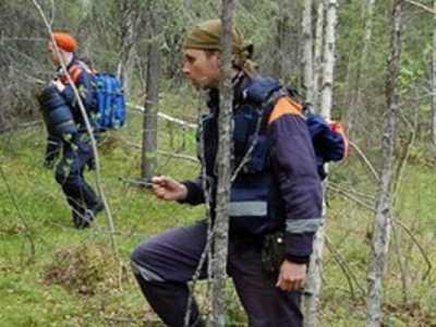 Женщину, заблудившуюся в сельцовском лесу, нашёл отец