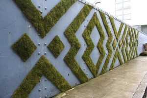 Брянские экологи научат ландшафтному дизайну