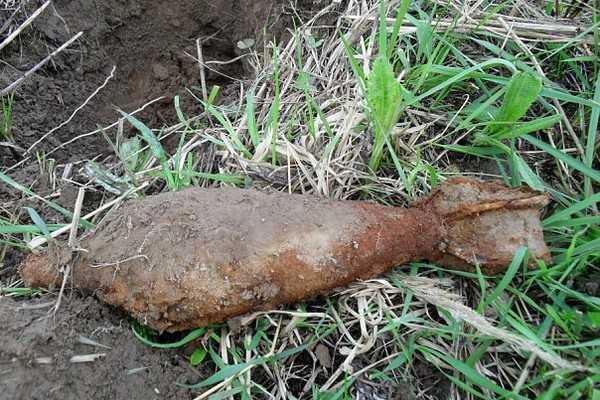 В Навлинском и Севском районах обезвредили боеприпасы