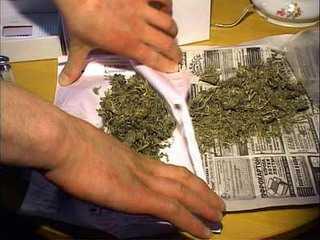 Брянский пожарный  три года готовил марихуану в своём гараже