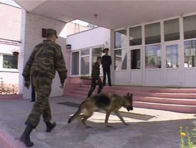 УМВД: Среди работников брянских школ судимых нет