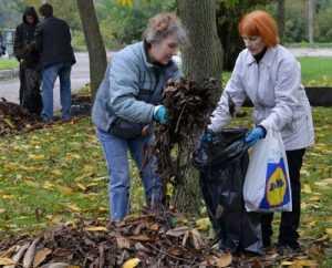 Власти Брянска перенесли субботник на 7 сентября