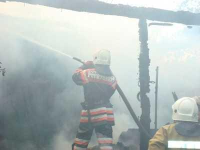 Жительница брянской деревни Бушевщина сгорела в своем доме