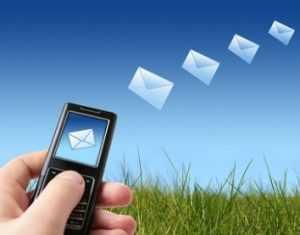 Брянец добился наказания для распространителей SMS-рекламы