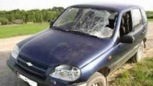 Пенсионер из суражского села погиб под колёсами  иномарки