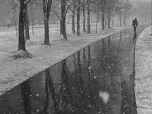 Сегодня в Брянске может выпасть первый снег