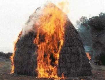 В брянской деревне сгорело шесть тонн сена