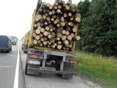 Через Брянскую область везли сомнительные арбузы, древесину и зерно