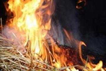 Полиция поймала поджигателя, спалившего сарай с сеном в брянском селе