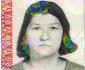 Брянская полиция ищет грибницу, пропавшую 17 сентября