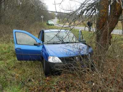 Под Новозыбковом водитель врезался в дерево и покалечил пенсионерку