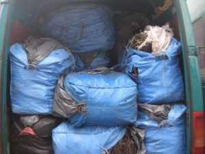 В Брянской области уничтожат 18 тысяч нелегально завезённых роз