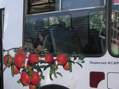 Власти Брянска заявили, что  троллейбусы снова пойдут