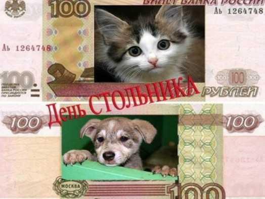 В Брянске проводят акцию помощи бездомным животным