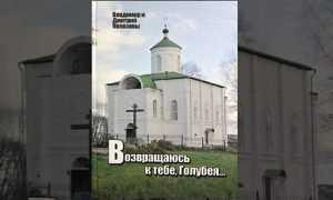 Брянские журналисты Полозовы представили книгу о Голубее