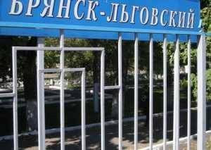 В Брянске на путепроводе иномарка сбила пешехода
