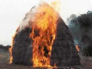 В брянском посёлке сгорело полтонны сена