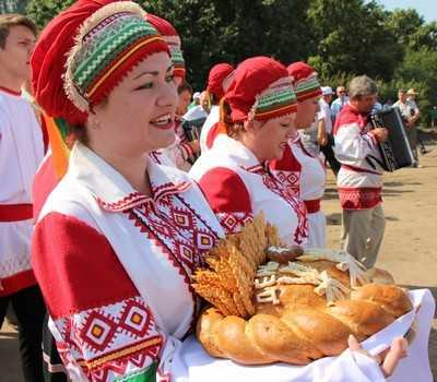 Брянскому правительству представили хлебный долгострой