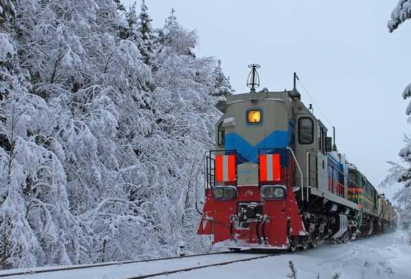 Украденные казахстанские тепловозы спрятали в Брянской области