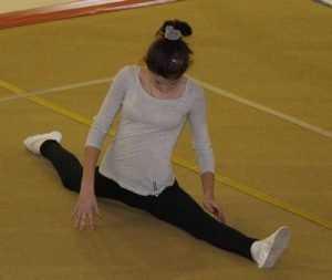В Брянск на соревнования съехались гимнасты со всей России