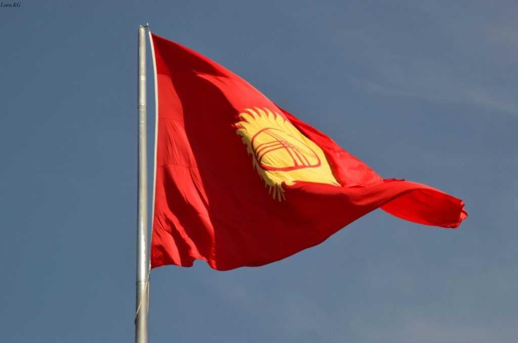 Осуждена киргизка, пытавшаяся подкупить брянского полицейского