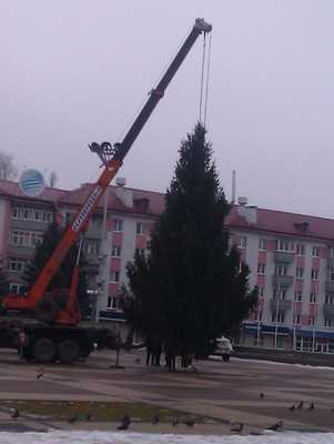 Власти Брянска удивили горожан елкой на площади Партизан