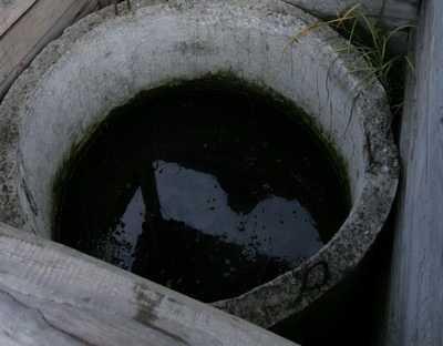Соседи брянцев месяц пили воду из колодца с трупом
