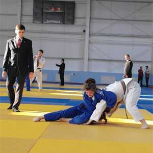 Брянские дзюдоисты привезли семь медалей из Белгорода