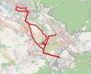В 101 день эстафеты Брянск получит олимпийский огонь из Орла