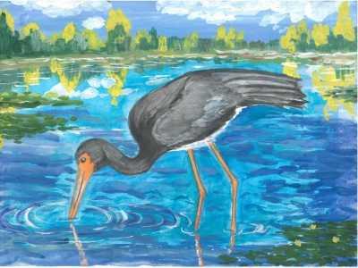 Брянские школьники победили в конкурсе «Мир заповедной природы»