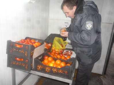 Брянскую область очистили от заражённых сирийских апельсинов
