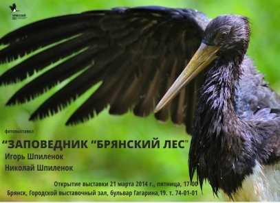 В Брянске откроется выставка, посвящённая истории заповедника